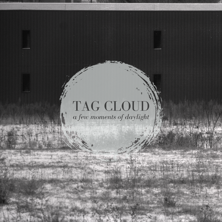 Tag Cloud - A Few Moments Of Daylight - cover