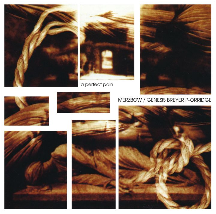 MERZBOW GENESIS BREYER P-ORRIDGE A Perfect Pain - Lo res cover image for web